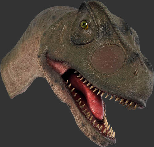 Allosaurus Head - Mouth Open / Fiberglass