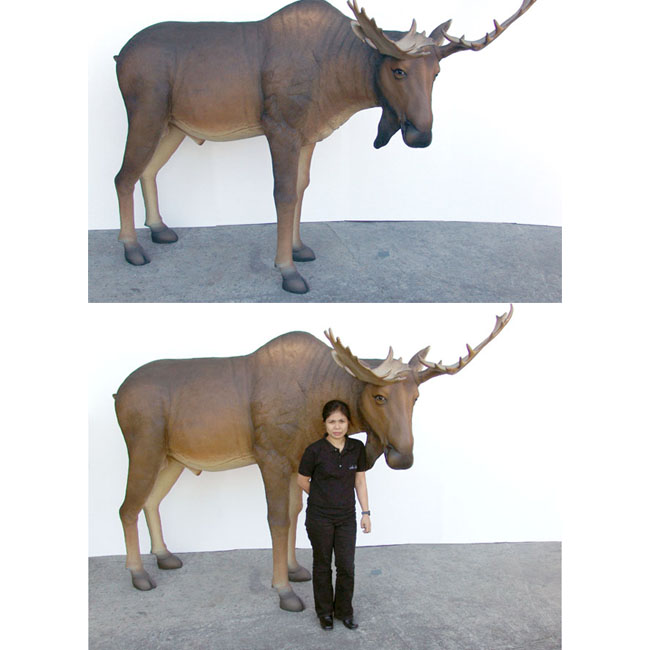 Fiberglass Moose Life Size