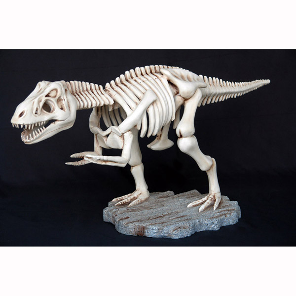 T-Rex Skeleton - Small